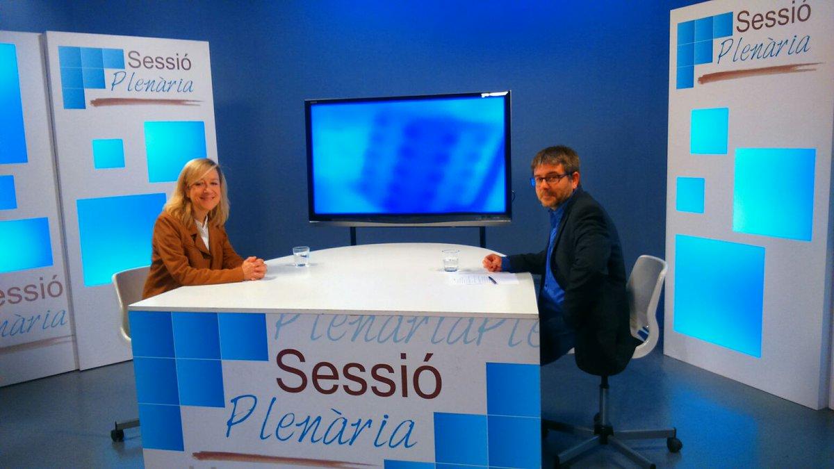Sessió Plenària